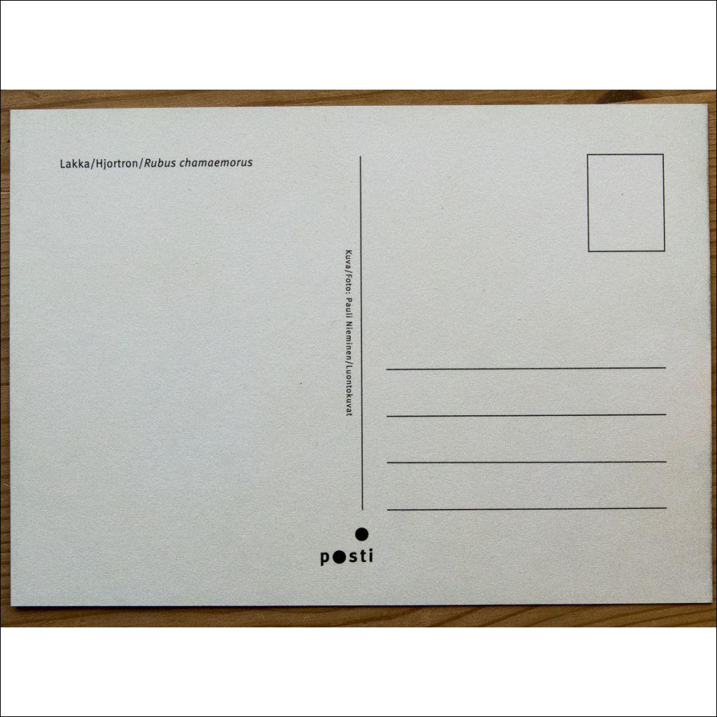 Maxi Kirje